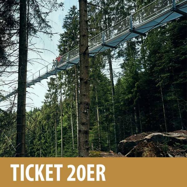 Online Ticket 20er