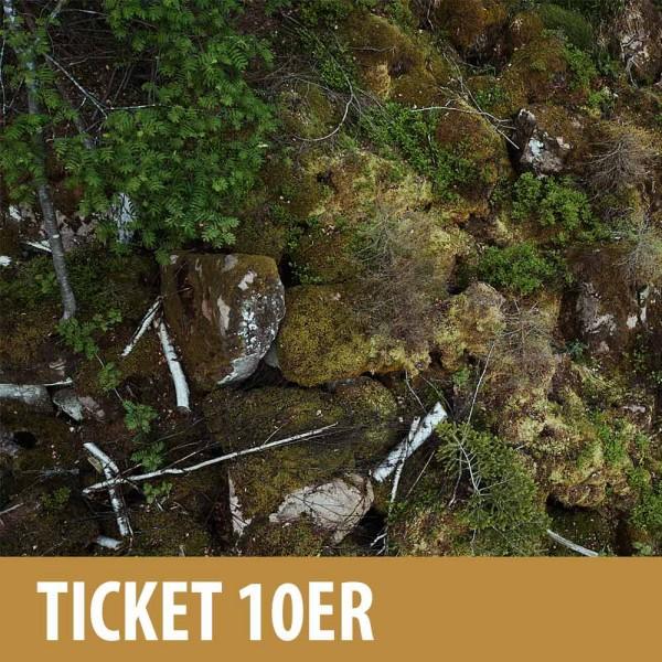 Online Ticket 10er